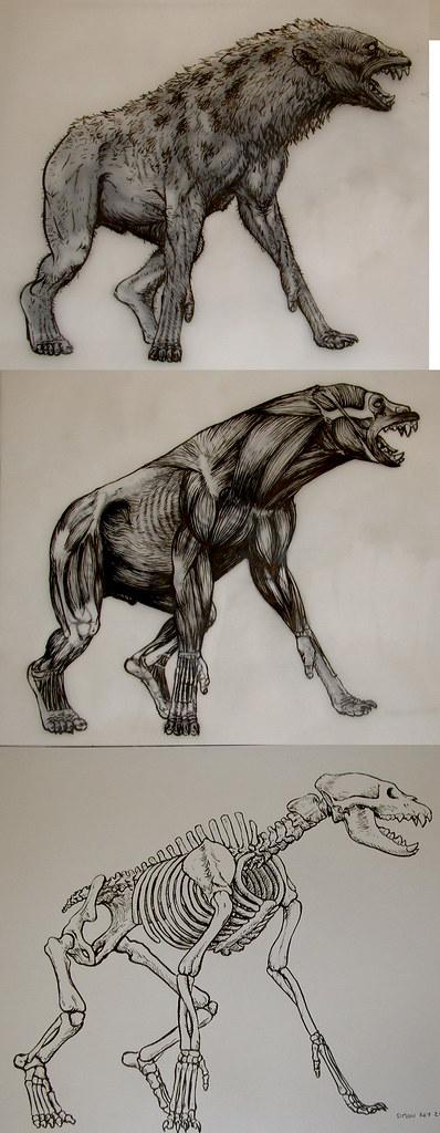 Were-hyena