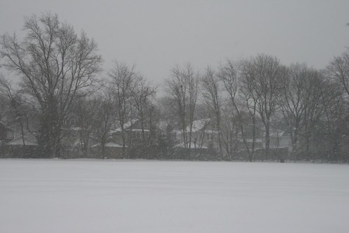 snowy 3