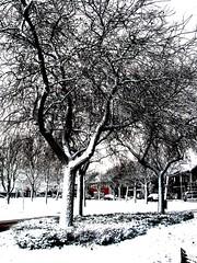 winter (hub en gerie) Tags: winter snow fun totalphoto platinumheartaward flickraward flickraward5