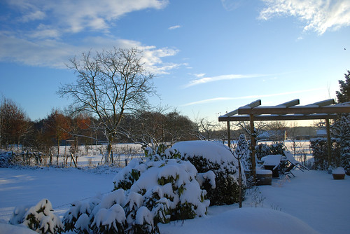 Snow in Hoog Keppel (1)