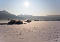 Under the winter sun (Karmen Smolnikar) Tags: winter sun snow nature meetup slovenia slovenija planinafield