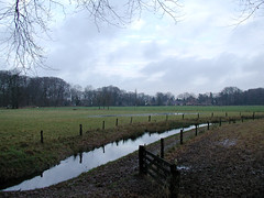 image054 (Gruble) Tags: ommen 3000z