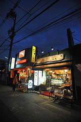 Tokyo 2009 - 鎌倉 - 隨手拍(16)