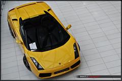 Lamborghini Gallardo Spyder (Brent S.) Tags: auto cars car yellow photography photo photos sony gelb autos a200 geel lamborghini gallardo lambo lamborghinigallardo hessing gallardospyder lamborghinigallardospyder sonya200