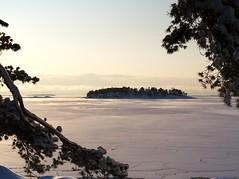Island view in Lauttasaari (blaahhi) Tags: winter sea snow landscape island frozen helsinki view branches balticsea lauttasaari 1445mmkitlens panasoniclumixg1 krmeluoto