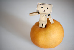 Ooh, Asian Pear (disneymike) Tags: california fruit toy japanese amazon nikon riverside manga korean cardboard pear amazoncom nikkor figurine d3 asianpear yotsuba danbo koreanpear revoltech 60mmf28gmicro danboard minidanbo amazoncomjp