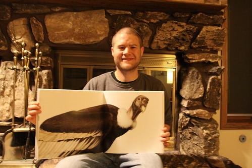 """Bird"" by Andrew Zuckerman"