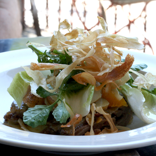 gazebo wine garden - confit duck salad