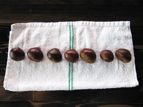 big chestnuts