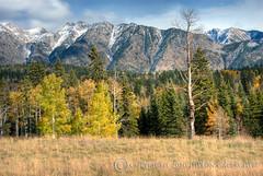 san-juan-mnts, Colorado (Dillon Gallagher) Tags: colorado durango sanjuanmountains