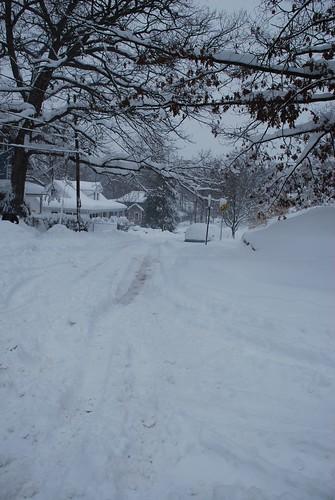 snow-feb2010-3