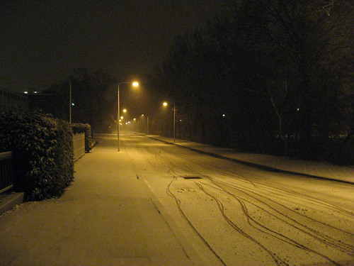 Midnight walk in the snow