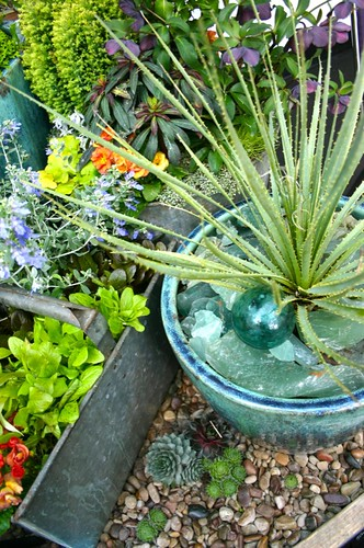 glass mulch, float and succulent combination
