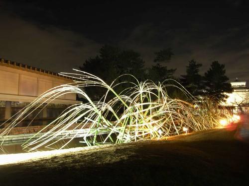 なら瑠璃絵@奈良公園-13