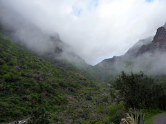 Gran Canaria - A Winter Day in Guayadeque