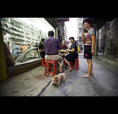 daily street life - China ( Tatiana Cardeal) Tags: guangzhou china street travel people urban dog digital asia chinese guangdong  tatianacardeal dailylife 2009 canton  canto huadu
