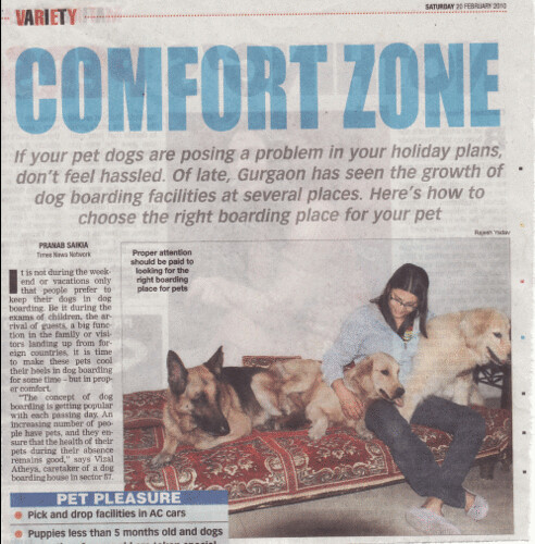 times of india gurgaon edition