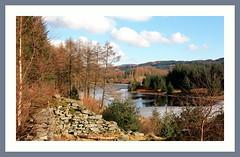 Loch Drunkie (Mac ind Óg) Tags: winter tree ice forest walking landscape scotland frozen framed ruin loch trossachs thetrossachs lochdrunkie lochlomondandthetrossachsnationalpark achrayforest