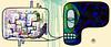Conversa de Skull (. ♦ F L F ♦ .) Tags: fish color art halloween cores dead skeleton skull design ghost peixe muertos bone anzola tatoo caveira carpa grafite crânio eskeleton cranio franciscofreitas
