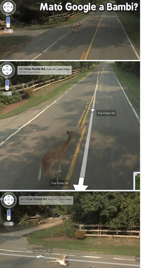 bambi-carretera-google
