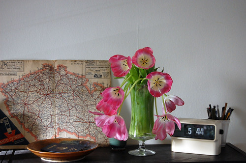 tulips, map
