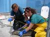 Measuring a seal
