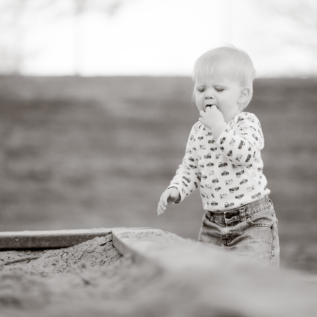 sampling the sandbox.