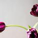 1003 flowers #3