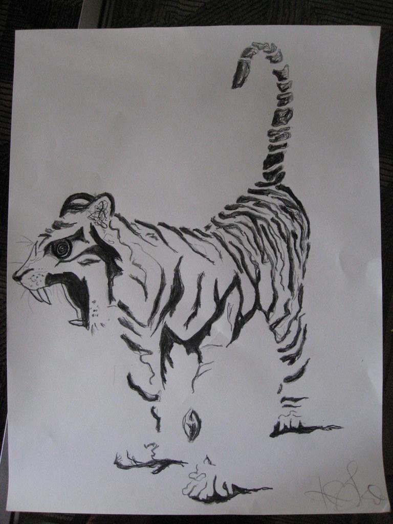 Kae's Tiger