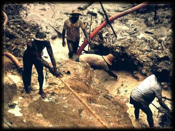 yanomami_gold_mining,Brésil, amazonie
