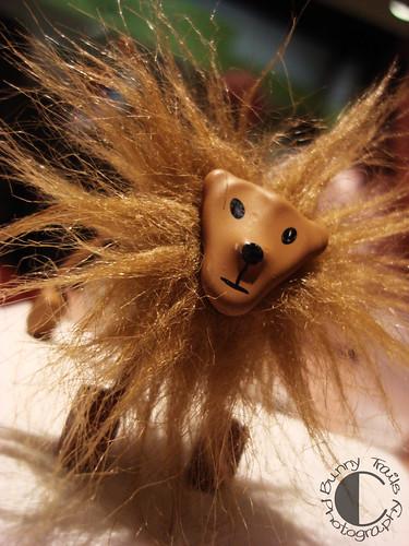 93-lion