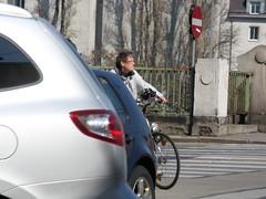 Vienna Cyclist Sticks