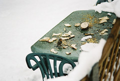 Robin having a winter buffet (mlgroveruk) Tags: snow green film robin 35mm fence bread table nikon erithacusrubecula westsussex kodak unitedkingdom 200asa crumbs nikkor europeanrobin stale 80200mm henfield nikkormatel