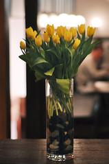 CSC_0061-Tulips-sm