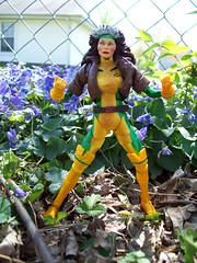 Marvel Legends Rogue by the flowers (Rohny Depp) Tags: toy xmen figure legends rogue marvel wolverine