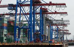 Back to business (Umschauen) Tags: ctb geotagged harbor ship crane hamburg terminal container evergreen hafen schiff imo burchardkai hhla vancarrier nikon7020028vr evercharming containerbruecke geo:lat=53539 geo:lon=9902333 9293777