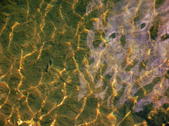 Golden Threads:  Endless Tears (Louise Lindsay) Tags: reflection home water gallery florida destruction clearwater oilspill floridabay seawater pleasehelp threatened sunonthewaves 3810 pulbic goldenreflections keylarog heartsaward justonerule clanflickr public2010 waterthreatenedbyoilspill sunonthewavereflections