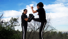 do martial arts online tao jeet kune
