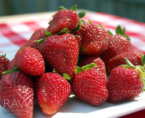 Virginia strawberries