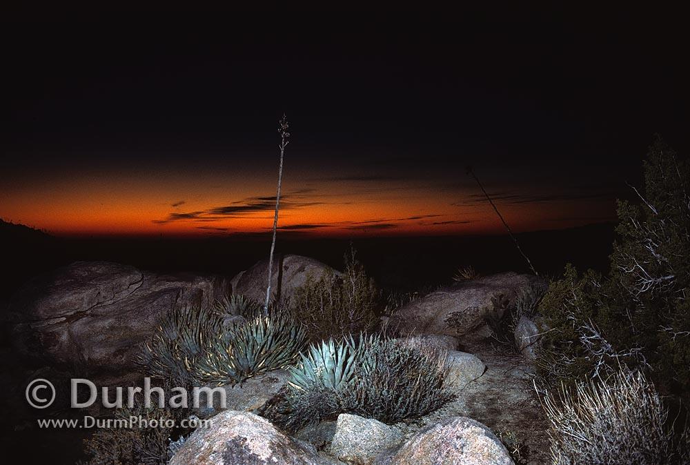 Desert Sunrise, Anza-Borrego