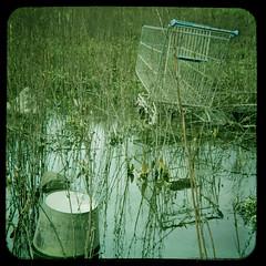 urban: mire (still~positive) Tags: urban pool rain for bucket motorway trolley mire 500x500