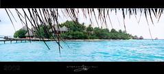 Maldive (Stefano Gilioli - Gillio) Tags: ocean travel blue sea summer vacation india holiday beach canon landscape island asia mare vacanza oceano isola maldive trasparent cristallina