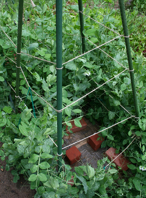 snow pea support tower