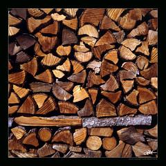 like wood, I'm waiting for my fire (guido ranieri da re: work wins, always off) Tags: life wood rolleiflex fire indianajones fuoco vita legno nonsonoglianniamoresonoichilometri guidoranieridare