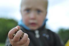 Main / Hand (GnondPomme) Tags: nikon child hand main pebbles enfant cailloux d90 nikond90 nikkor35mmf18 nikonfrance pixeliste gnondpommephotographie