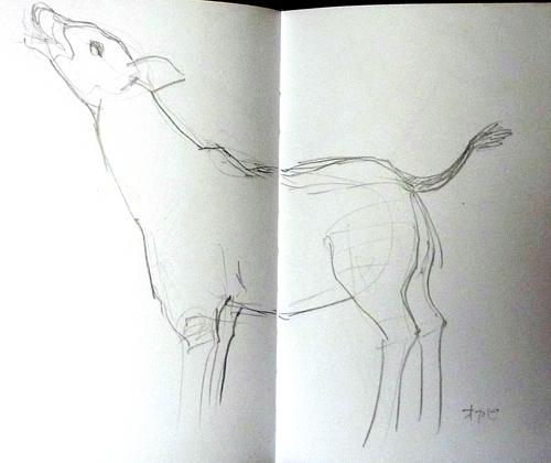 sketch06_d