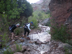Barry Spotting Anne, Stream Crossing on North Kaibab Trail