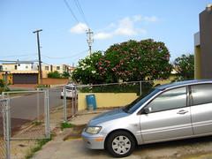 (Minno Ramirez) Tags: street urban colors landscape island calle puertorico structure arecibo urbana caribbean emptiness urbanscape borinquen contemporarylandscape peopleless newtopographics nuevatopografia