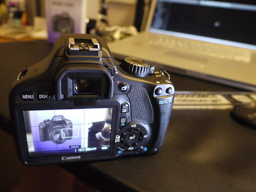 Rear View: Canon EOS 550D (Rebel T2i / Kiss X4 Digital)