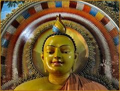 BUDDHIST STAUE. SRI LANKA.